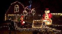 christmas_lights_t3026
